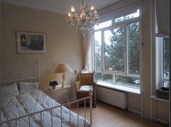 EasyKamer NL - Well  furnished room near CS, Den Haag - € 400 p.m.