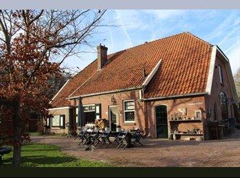 EasyKamer NL - Te huur kamer in Hengevelde €300 per maand All-in, Hengelo - € 300 p.m.