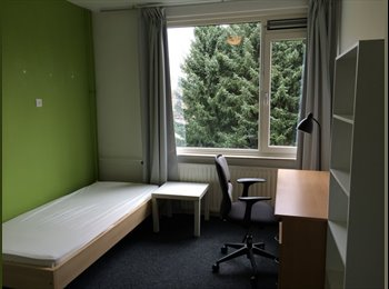 EasyKamer NL - Furnished, close to Centre and Shopping Area, private and cozy, Eindhoven - € 500 p.m.