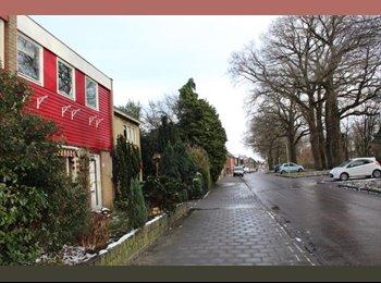 EasyKamer NL - Te huur mooie zolderkamer 12m2 in Enschede €300,- All-in per maand, Enschede - € 300 p.m.