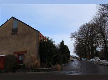EasyKamer NL - Te huur kamer 15m2 in Enschede €380,- All-in per maand, Enschede - € 380 p.m.