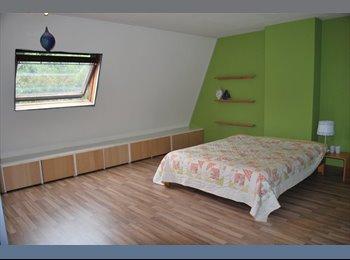 EasyKamer NL - Mooie ruime kamer te huur in groene omgeving, Leeuwarden - € 370 p.m.