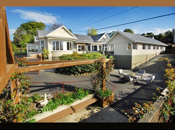 NZ - Professional people;mature students; families - Belleknowes, Dunedin - $138 pw