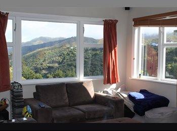 NZ - Brooklyn room for rent, Wellington - $155 pw
