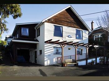 NZ - Beaumonthouse, Dunedin - $160 pw