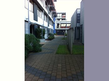 NZ - Easy living for an older flatmate - Mt Cook, Wellington - $220 pw