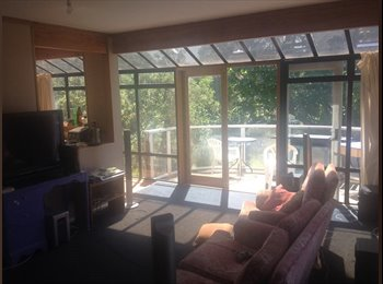 Awesome flat close to the University of Canterbury
