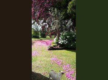 NZ - KATI KATI -backpackers, seasonal accommodation,travelers - Tauranga, Tauranga - $90 pw