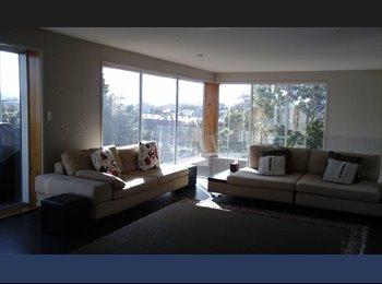 NZ - 3 Level Modern House - Napier, Napier-Hastings - $260 pw