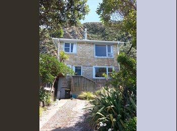 NZ - Sublet in beautiful Breaker Bay - Breaker Bay, Wellington - $250 pw