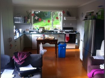 NZ - SUBSIDISED RENT FOR WHOLE YEAR!! - Dunedin North, Dunedin - $95 pw