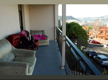 NZ - Lovely sunny spacious room! - Dunedin Central, Dunedin - $130 pw