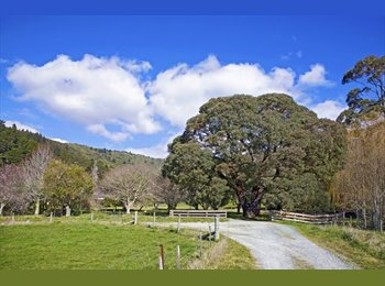 NZ - Sunny Room in Parklike Setting..in Fabulous Nelson North - Wakapuaka, Nelson - $165 pw