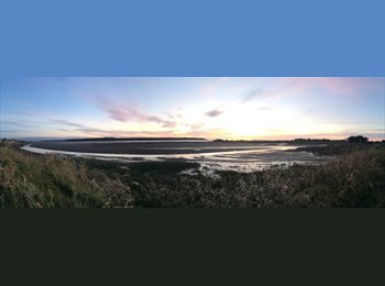 NZ - Beach House for Summer @ FOXTON BEACH - Palmerston North, Palmerston North - $100 pw
