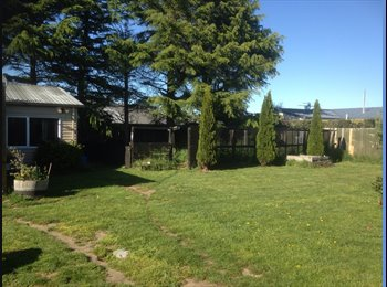 NZ - Large sunny sleep out available to rent - Templeton, Christchurch - $240 pw