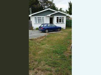 NZ - Room avaliable in Springlands!  - Blenheim Central, Marlborough - $120 pw
