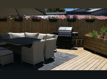 NZ - ROOM OFFERED IN 3 BEDROOM HOME IN QUIET AREA WITH EASY-GOING MATURE PROFESSIONAL FEMALE - Bellevue, Tauranga - $230 pw