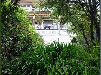 NZ - Lovely room for rent - Te Aro, Wellington - $195 pw