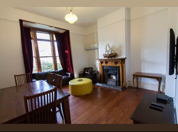 Double room available in the heart of the city