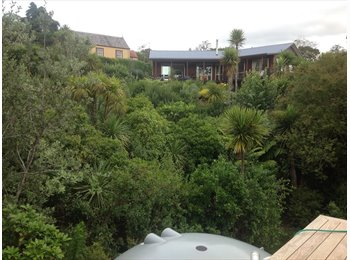 NZ - Large new room to rent . - Sunnyvale, Auckland - $180 pw