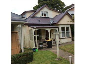 NZ - 4 Bedroom Furnished Flat - Dunedin North, Dunedin - $100 pw