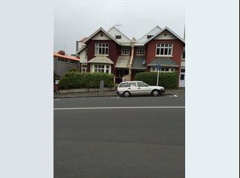 NZ - Very Central City Dwelling - Dunedin, Dunedin - $135 pw