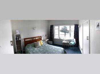 Oriental Bay deco beachside apartment