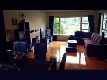NZ - Friendly home - Karori, Wellington - $164 pw