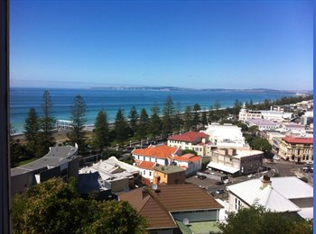 NZ - Beautiful big room in Central Napier , Napier-Hastings - $150 pw