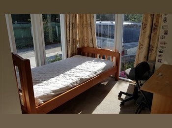 NZ - Sunny Double Bedroom in Upper Riccarton - Upper Riccarton, Christchurch - $140 pw