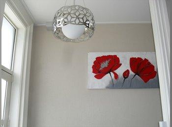 NZ - Modern cosy studio room, Dunedin - $230 pw