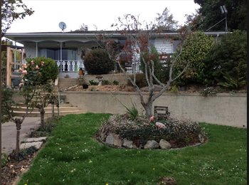 NZ - Fully furnished, clean, 4 bedroom home , Dunedin - $300 pw