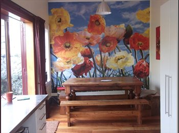 NZ - furnished ,sunny, room in large character house in Berhampore , Wellington - $170 pw