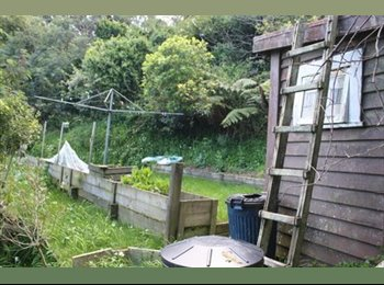 NZ - Room available immediately in Morington $160 including bills, Wellington - $160 pw