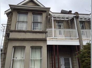 NZ - Great 2 Bedroom On George Street, Dunedin - $205 pw