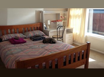 NZ - Sunny Single & Double Room to Rent, Christchurch - $150 pw
