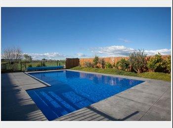 NZ - Beautiful 5 bedroom houst with pool, Hamilton - $195 pw