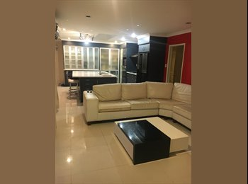 NZ - large double bedroom to rent, Tauranga - $250 pw