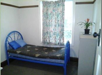 NZ - Guest Room, Christchurch - $160 pw