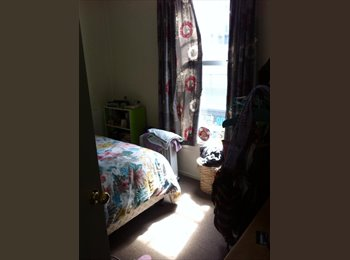 NZ - Room for the summer in town , Wellington - $190 pw