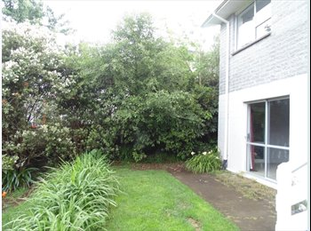 NZ - Spacious Room Available, New Plymouth - $150 pw