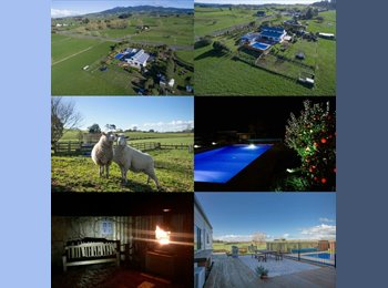 NZ - Beautiful 5 bedroom houst with pool, Hamilton - $225 pw