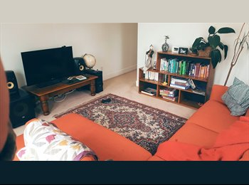 NZ - 3 MONTHS OF ACCOMODATION FOR REDUCED PRICE - SUMMER IN WELLINGTON, Wellington - $450 pw