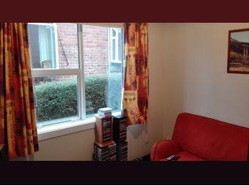 NZ - Large room for rent, Dunedin - $116 pw