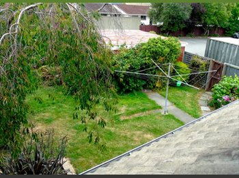 NZ - Awesome sunny home with beautiful garden and massive rooms, Christchurch - $150 pw