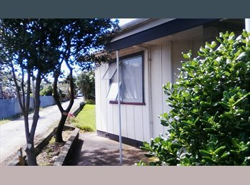 NZ - Large room , Palmerston North - $130 pw