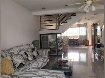 A room for rent 复式组屋有一房间出租