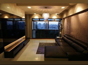 Renovated common room for rent at AMK 596C