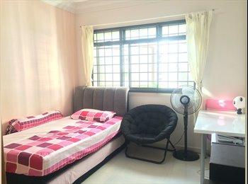 Fully Furnished Room near AngMoKio MRT and Amenities