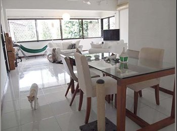 EasyRoommate SG - Room for rent - Orchard, Singapore - $1,500 pcm